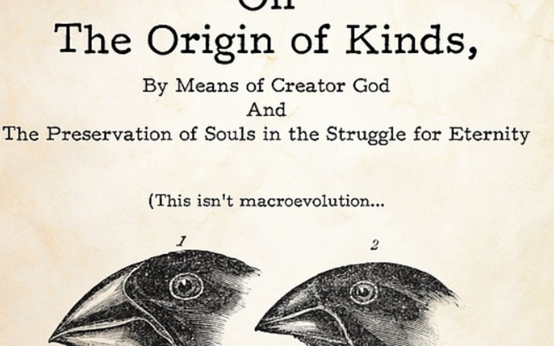 How Kinds (Not Species) Originated – Pastor Andrew Rappaport and Dr. Anthony Silvestro