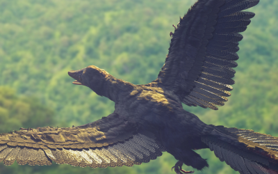 Take Flight: Did Birds Evolve From Reptiles?